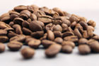 coffee_arabica-140